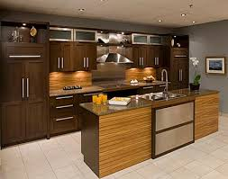usa kitchen cabinets 15 facts you never knew about kitchen cabinets usa