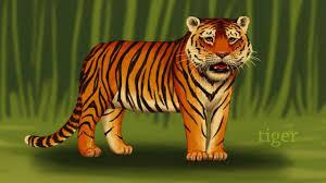 jungle animals kids animals zoo animals for preschool and