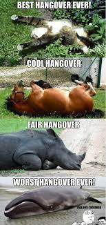 Hangover Meme - hangover meme jokeitup com