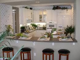 Kitchen Wallpaper Backsplash by Kitchen Beige And White Kitchen Raised Panel Cabinet Door L