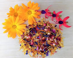 organic edible flowers edible flowers etsy