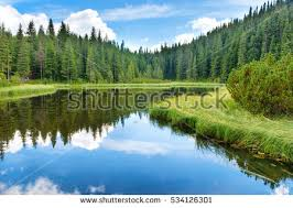 lake water stock images royalty free images vectors