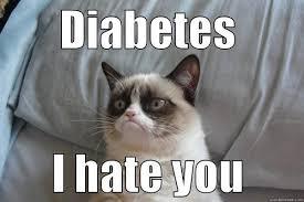 Diabetes Cat Meme - grumpy cat feline diabetes message board fdmb
