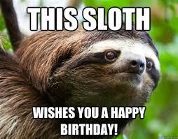 Sexy Sloth Meme - th id oip hzdgk7cqfvonllc1jizadghafz