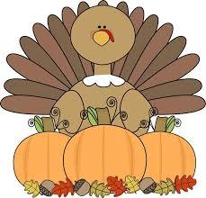 pre thanksgiving turkey clip 101 clip