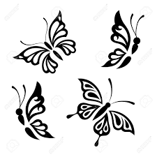 collection black and white butterflies for design isolated on