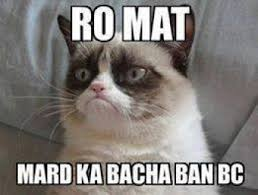 Hi5 Meme - to mat mard ka bachcha ban bc grumpy cat commentphotos com