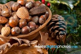 christmas nuts christmas nuts stock photo royalty free image id 100222573