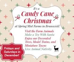 candy cane christmas at spring mist farms weekends in december