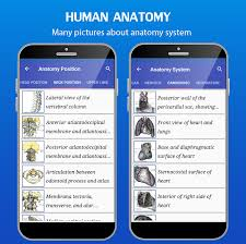 Human Anatomy Atlas Gray U0027s Anatomy Atlas Android Apps On Google Play