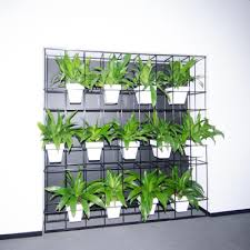 Vertical Garden Ideas Horticulture Of Australia Hal Pot Plant Vertical Garden Garden