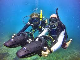 idc koh tao padi underwater naturalist instructor courses