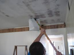 cottage instincts the score is harveys 1 cottage cheese ceiling 0