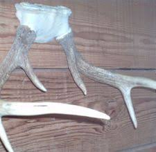 How To Make Deer Antler Chandelier Antler Chandelier Tutorial Deer Antler Chandelier Deer Antlers