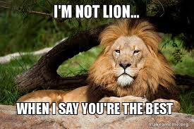 Your The Best Meme - i m not lion when i say you re the best contemplative lion