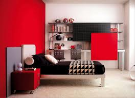 red and white walls home design ideas