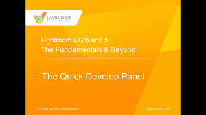 Why And How To Use by Lightroom Quick Develop Learn Why And How To Use This Panel Youtube