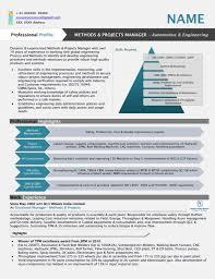 Resume Sample Vendor Management by Graphical Resume Samples Resume Jar