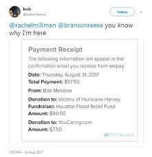 woman raises 20 000 for victims of harvey with cat photos daily