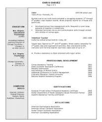 Resume Cashier Sample by Examples Of Resumes Chicago Essay Outline Style Sample With
