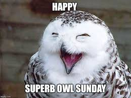Superb Owl Meme - to all those in america happy super bowl sunday imgflip