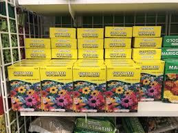 does dollar tree sell light bulbs get ready for spring at dollar tree grab 25 flower seed packets