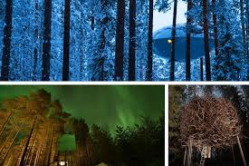 tree hotel sweden treehotel sweden the eco gypsy ethical exploration