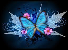 butterfly wallpaper butterfly wallpaper pinterest
