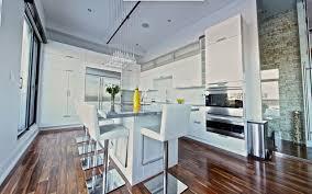 Pro Kitchens Design Pro Kitchen Design Home Planning Ideas 2017