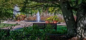 download outdoor gardens solidaria garden