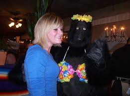 singing telegram birthday black gorilla singing telegram smiles for all occasions