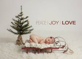 thanksgiving newborn photography baby d boston newborn