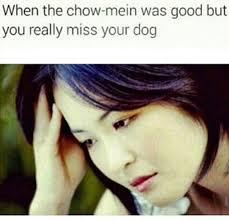 Asian Dog Meme - asian jokes small dump album on imgur