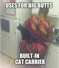 Big Butt Memes - 33 memes you ll definitely appreciate if you were blessed with a big
