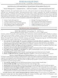 Senior Sales Executive Resume Samples Can You Put Two Addresses On A Resume Sample Of A Good