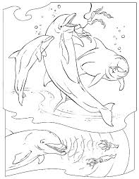 amazing ocean animal coloring pages 45 seasonal colouring pages