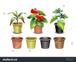indoor office plants 1 stock vector 73400965 shutterstock