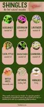 gel nails protecting your nails from overexposure to chemicals and allergic reactions 89 best herbal remedies for skin images on pinterest herbal