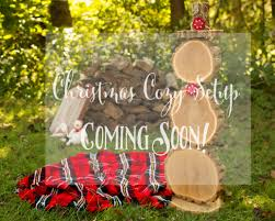 dana monticelli photography christmas mini sessions u2014signups
