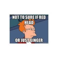 Futurama Fry Meme - futurama fry meme the memes made me do it pinterest futurama