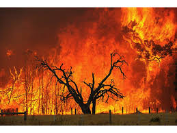 Wildfire Areas by Earthbag Domes For High Fire Risk Areas Natural Building Blog