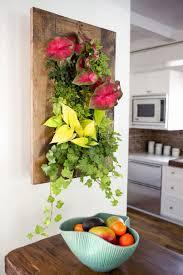 interior garden wall livingroom wall mounted planters outdoor indoor living wall