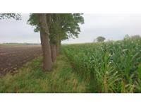 landwirtschaftliche fläche kaufen landwirtschaftliche fläche kaufen kleinanzeigen für immobilien in