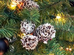 christmas organicas trees tree lights decoration marvelous