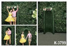 wedding vinyl backdrop 2017 5x7ft green wall for wedding photography backgrounds photos