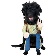 Small Dog Halloween Costumes Ideas 268 Halloween Costumes Puppies Dogs Images