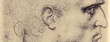 the sketches of leonardo retinart