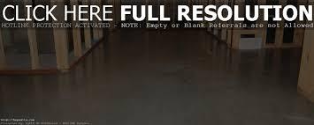 Concrete Floor Coatings Basement Concrete Floor Paint Sealer Basement Decoration