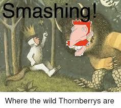 Smashing Meme - smashing where the wild thornberrys are smashing meme on