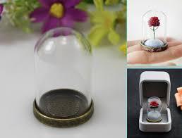 little prince rose glass terrarium globe necklace pendants glass
